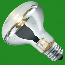 Unbranded 60W Reflector Incandescent Light Bulbs