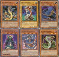 Yugioh Venom Deck - Vennominaga Vennominon Snake Cobra Serpent Boa Swamp Reptile