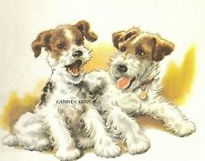2 Wire Haired Fox Terriers Adorable 1960's Vintage Art Print Winifred Martin