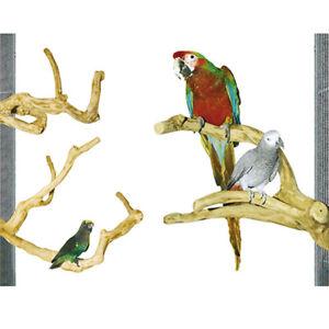 Sitzstange für Papageien aus Kaffeholz Medium - Ideal für mittlere Papageien