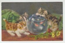 (65523) OLD POSTCARD KITTENS LOOKING at GOLDFISH BOWL