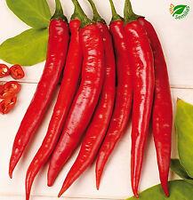 Pimiento Picante Cayenna ( 100 semillas ) seeds - cayenne cayena guindilla