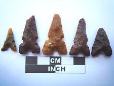 5 x puntas de flecha neolítica, Eiffel/puntos de Marruecos, Genuino - 4000BC (T046)