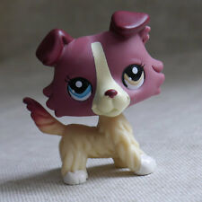 in hand red-brown Collie dog LITTLEST PET SHOP LPS mini Action Figures #