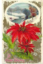 Weihnachten, Weihnachtsstern, amerikanische Prägekarte, 1912