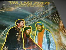 """The Last Poets With  Bernard Purdie – Delights Of The Garden  USED 12"""" 1977"""