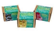 More details for diy oyster mushroom growing kit - blue, yellow and pink