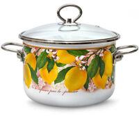 Enamelware Cooking Pots with Glass Lids w/ Lemons Decal, White Enamel Pans