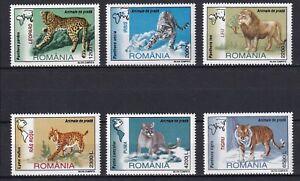 Romania 2000 Fauna, Animals, Predators 6 MNH stamps