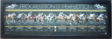 PROGRESSION OF PERFECTION TEN OF MELBOURNE CUP CHAMPIONS PHAR LAP MAKYBE DIVA...