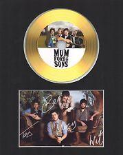 Mumford & Sons Gold Disc Display