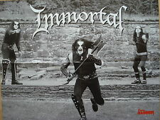 In Flames/immortal __ 1 POSTER/MANIFESTO __ 45 CM x 58 cm