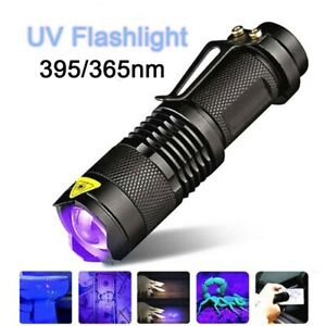 UV Ultra Violet LED Flashlight Blacklight 395nm 365nm Find Urine Bodily Fluids