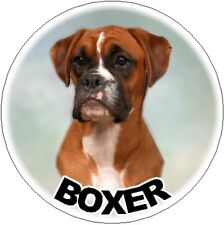 2 Boxer Car Stickers Designed By Starprint