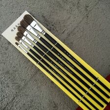 6pcs Watercolor Artist Oil Painting Wild Boar Bristle Paint Brush Bristles
