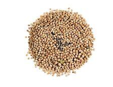 Coriander Dried Whole Seeds Cilantro Spice 300g-2kg - Coriandrum Sativum