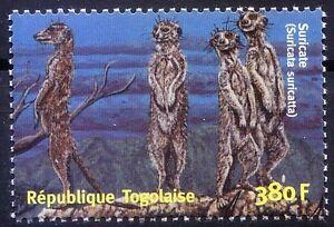 Meerkat, Suricate, Wild Animals, Togo 2001 MNH