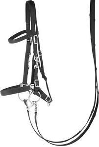 Harry's Horse Englische Trense / Halfter Nylon schwarz unterlegt Karabinerhaken