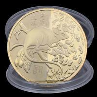 2020 jahr der ratte herausforderung münze chinesisches tierzeichen vergoldetGxj