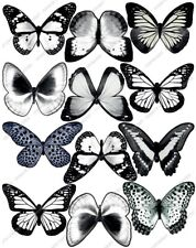 Cakeshop 12 x PRE-CUT White Edible Butterfly Cake Toppers