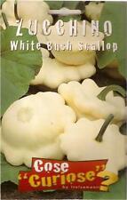"""Environ 10 Pépins/Graines Courgette Blanc """" Bush Scallop"""