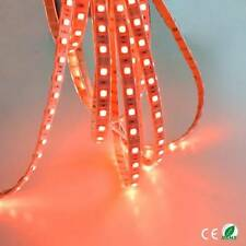 12v 5M RED LED SMD STRIP ROPE RIBBON BRIGHT LIGHT WATERPROOF LIGHTING HOME BAR