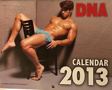 DNA Magazine Calendar 2013 - Todd Sanfield / Julien Gabriel  / Will Grant + More