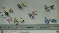 Mini Mushroom BIRDS 2pk 15mm High x 32mm Long x 15mm Wide - 6 Colour Choice