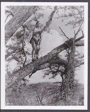 8x10 Photo~ TARZAN'S GOES TO INDIA ~1962 ~Jock Mahoney ~Vine swing