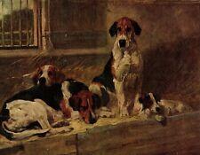 1930s Antique Foxhound Art Print J Emms Dog Art Hunting Dogs Art Print 3596-F