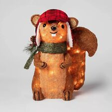 Sisal Squirrel Sculpture w/Lights Xmas Holiday Lit Decoration Indoor/Outdoor
