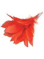 Adult 20s 1920s Charleston Flapper Red Feather Hair Clip Fancy Dress Accessory