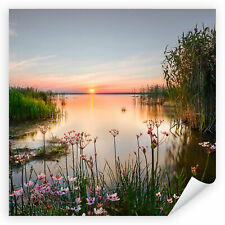 Postereck 4023 Poster Leinwand Qaudrat, See Sonnenuntergang Ufer Blumen Natur