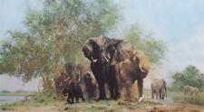 "David Shepherd "" ELEPHANTS AND EGRETS "" Limited Edition Print"