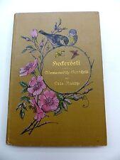 Otto Raupp Heckerösli Alemannische Gedichte Denzlingen Wiesental Baden 1910