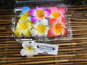 Frangipani Hair Claw clips x 6 pcs (9cm diameter) double flowers