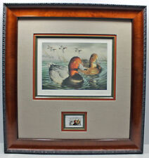2002 Texas Waterfowl Duck Conservation Stamp Print Framed New Mint Redhead S/N