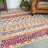 Terra Pink Rugs for Living Room Stylish Tribal Vintage Runner Rug for Hallway UK