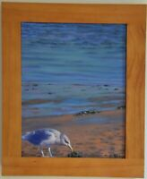 Beth Riso Original Fine Art Oil Painting - Chatham Bar Bird - Cape Cod Birds