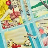 Aqua Blue/Multi 1950s Vintage Hawaiian Rayon Print, Fabric By The Yard