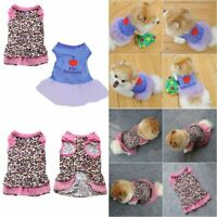 Summer Female Pet Dog Cat Tutu Dress Lace Skirt Small Puppy Princess Clothes New