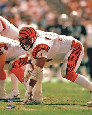 ANTHONY MUNOZ Cincinnati Bengals c.1988 Classic Premium POSTER Print