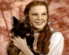 "JUDY GARLAND THE WIZARD OF OZ DOROTHY TOTO 8x10"" HAND COLOR TINTED PHOTOGRAPH"