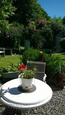 £99 Feb 23-25 Charming Cottage Anglesey North Wales