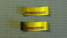 HORNBY TRIANG OO GAUGE BRITANNIA CLASS 7P6F LOCO OWEN GLENDOWER NAME PLATES NEW