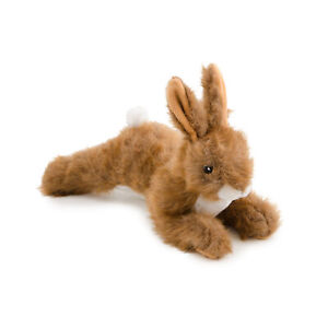 Ancol, Dog Toy, Dog Toy Hare, Dog Play Toy, Squeeky Toy, Plush
