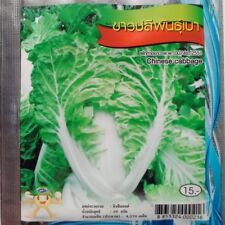 4270 seeds Chinese cabbage Thai Vegetable Plant Chia Tai