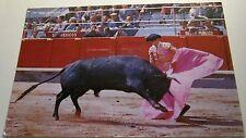 Spain Cordoba de Toros - posted