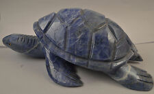 Tortue en Sodalite sculpture en pierre 170x110mm