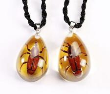 PAIR LOVER NEW REAL BUG LUCITE NECKLACE PENDANT INSECT JEWELRY TAXIDERMY GIFT